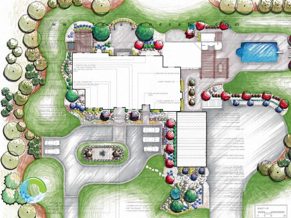 طراحی کاشت - نقش کارکردی گیاهان در لنداسکیپ و محوطه سازی