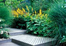 انتخاب رنگ زرد برای محوطه سازی و لنداسکیپ-طراحان سبز