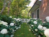 انتخاب رنگ سفید برای محوطه سازی و لنداسکیپ-طراحان سبز