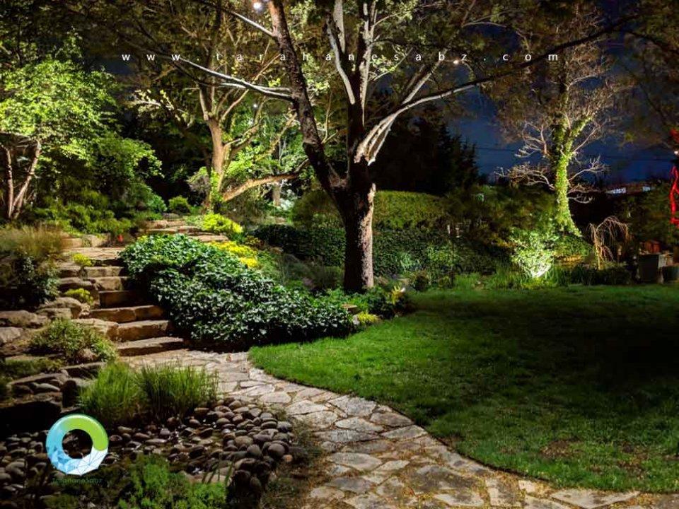 نقش درختان در باغ و محوطه سازی و فضای سبز و لنداسکیپ | طراحان سبز