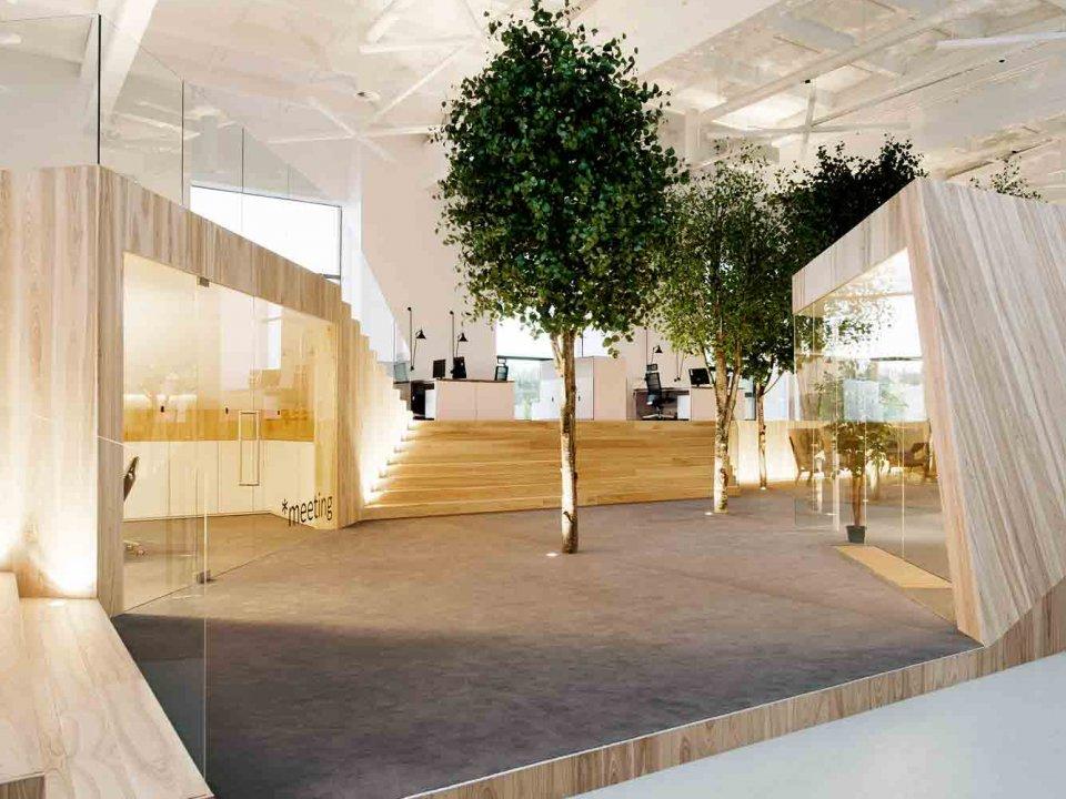 گیاهان در معماری داخلی | طراحان سبز